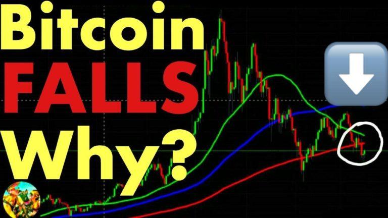 Bitcoin Falls – Why? When Will Bitcoin Go Back Up?