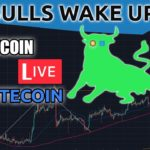 Bitcoin & Litecoin Bulls Wake Up...AGAIN