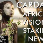Cardano News - ADA Crypto Staking via Shelley & Pan-Africa Enterprise Vision