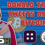Donald Trump Speaks About Bitcoin   SEC Approves Token Sale   Twitter Goes Down   IOST News