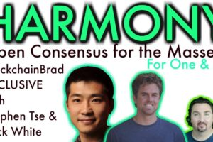 Harmony   BlockchainBrad Exclusive   Open Consensus for next 10B   Global DLT