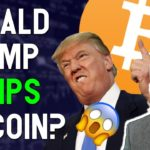 TRUMP Tweet PUMPS Bitcoin?! $2.4 BIllion BNB to be burned? Market & Portfolio Changes!