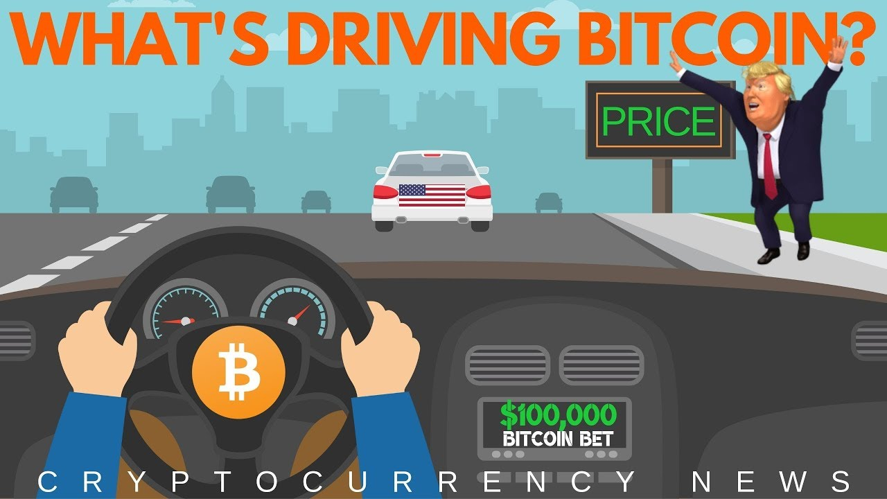 What is Driving Bitcoin Price? BET on BTC To $100,000 by 2020 - Crypto News