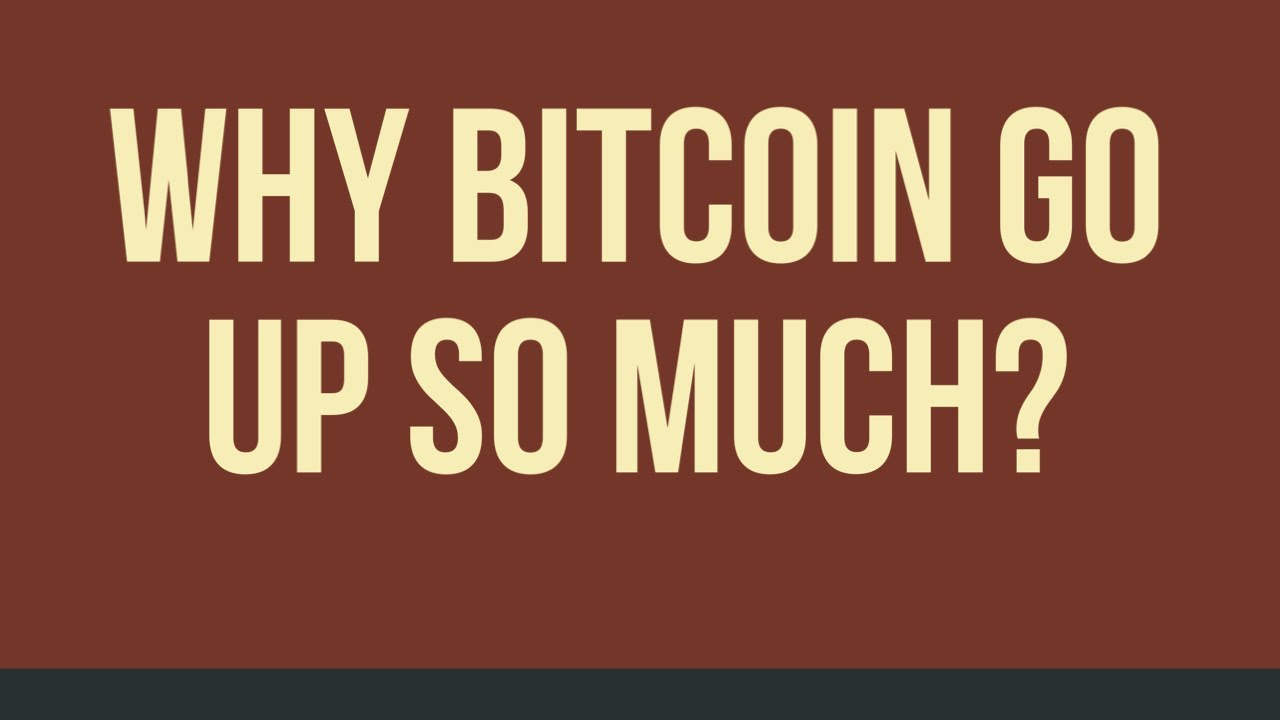 Why Did Bitcoin Go Up So Much? What you SHOULD KNOW!