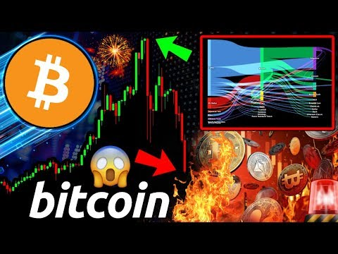 Will Bitcoin Continue to DUMP?! The REAL Reason BTC Pumped So HARD! What Next?