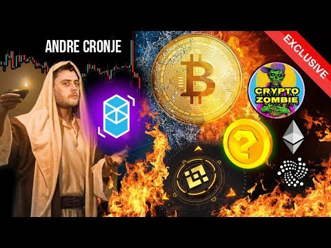 Will Bitcoin Survive? Are IEOs Scams? 99% of Altcoins Will Die?! Andre Cronje Interview