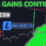 Will Bitcoin and Litecoin Gains Continue?