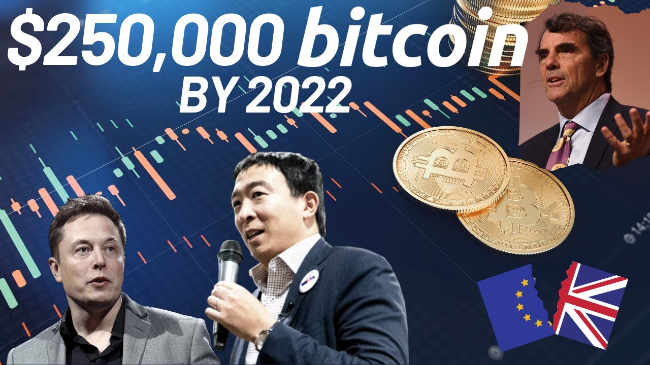 $250,000 BTC by 2022   Elon Musk Supports Andrew Yang   Bitcoin News
