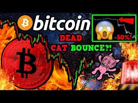 Bitcoin DEAD CAT Bounce?! Bearish Signal PANIC!!! $BTC WHALES BOUGHT the DIP!?