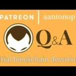 Bitcoin Q&A: Initial blockchain download