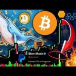 Bitcoin Whale Pumping Prices!!! 20,000 $BTC Order! 40% MORE Gains to Go?!?