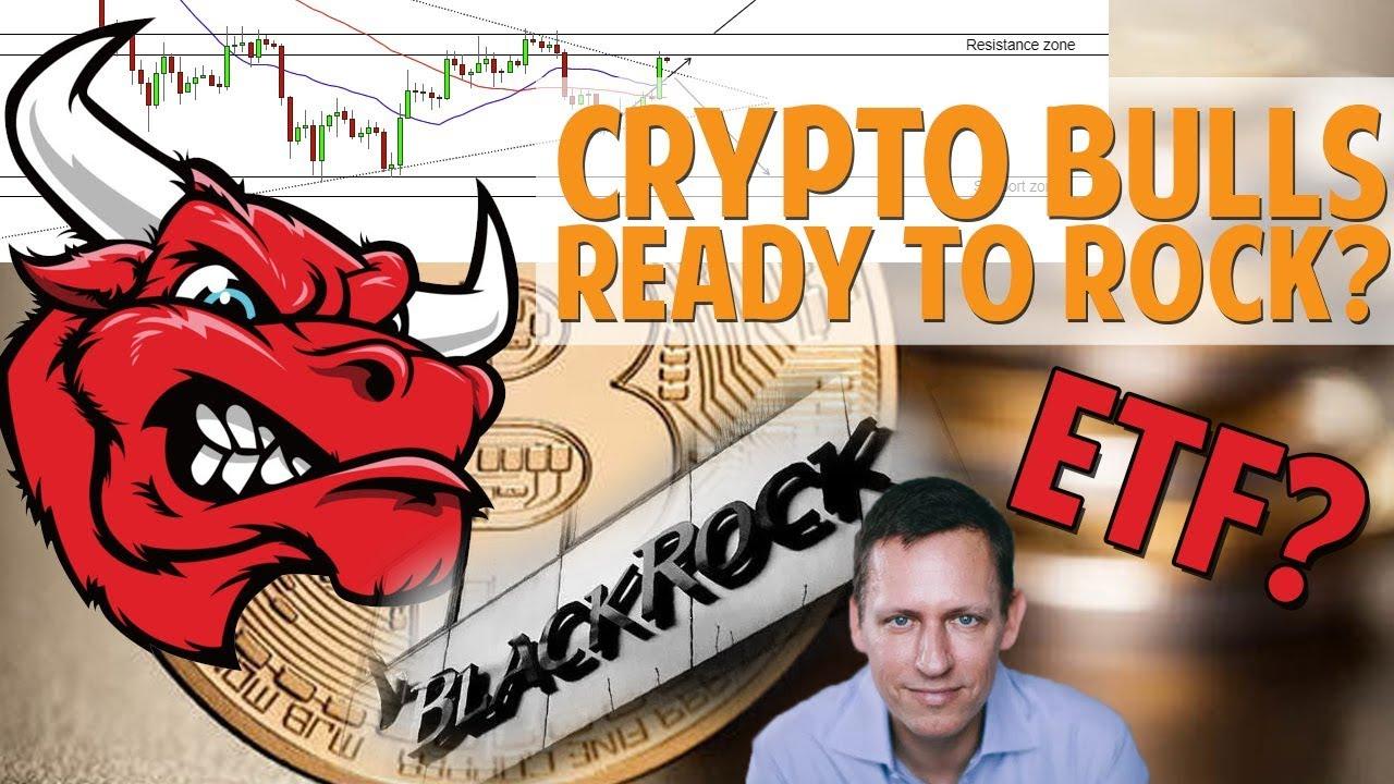Crypto Bulls Are FINALLY Back?! TA & FA Looking Very Bullish!