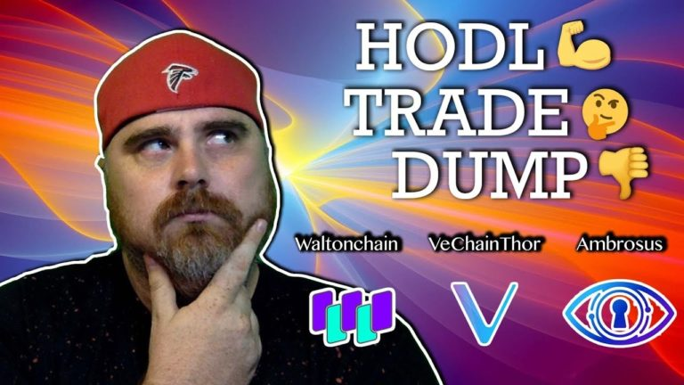 Hodl, Trade, or Dump: VeChainThor vs Waltonchain vs Ambrosus