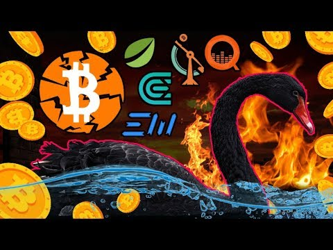 If This Bitcoin Black Swan Event Is True It COULD Seriously Damage the Crypto Space Short-Term...