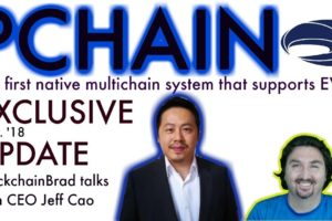 PChain Exclusive Update | First Native Multichain | Scaling Platform | MainNet | Crypto Update