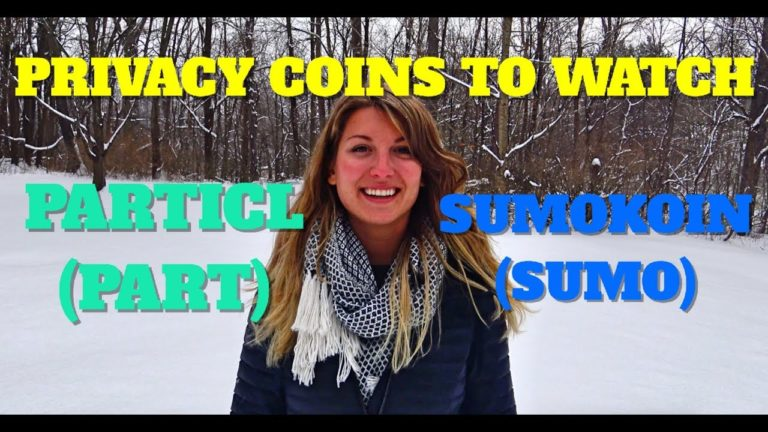 Privacy Coins to Watch: Particl & Sumokoin