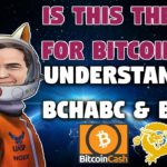 The End for Bitcoin SV | Exposing Craig Wright as a Fraud | Roger Ver a Hero?