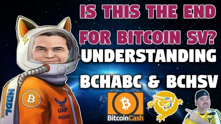 The End for Bitcoin SV   Exposing Craig Wright as a Fraud   Roger Ver a Hero?