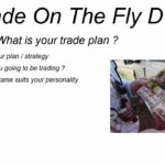 Trade On The Fly DVD trailer - with Michele Offshorehunter