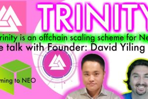 Trinity: Neo's offchain scaling solution. Turning 1000tps into millions: Neo's Raiden is here!