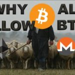 Why the Alts Follow BTC Price Movements