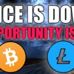Bitcoin & Litecoin Price Are Down - HERE IS WHY That's Good!
