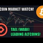 Quick Bitcoin Check-In! Check Out The Altcoin: Tael [Wabi]
