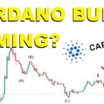 Cardano Bull Coming? (MUST WATCH)