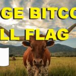 Bitcoin Bullish Flag Pattern (Explosive Growth)