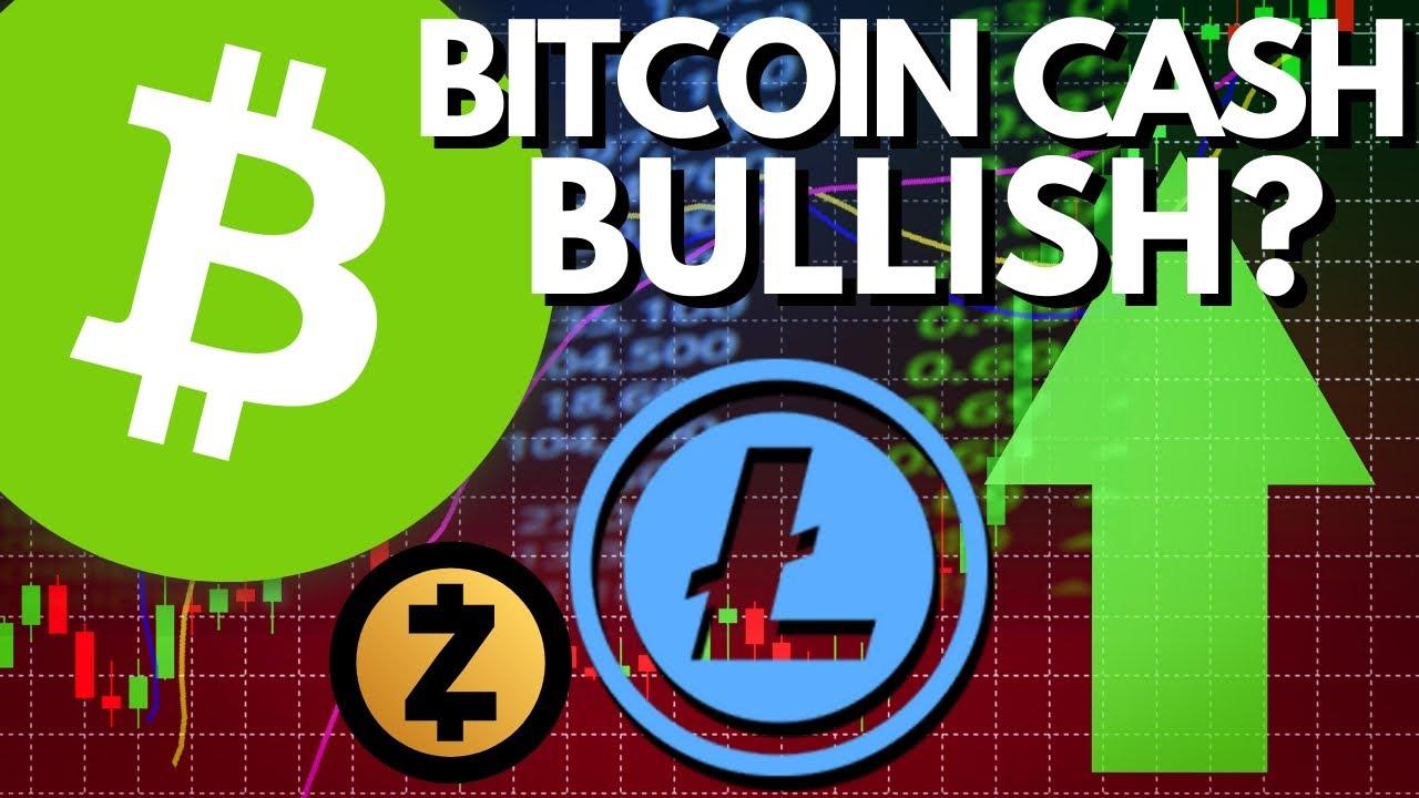 Does BCH FUD Make It BULLISH? Bitcoin Cash Halving, Developer Fund Tax