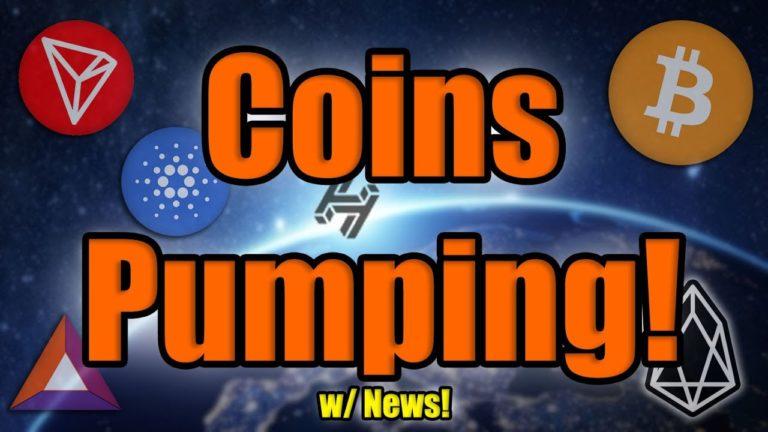 Bitcoin DUMPS! But MAJOR COIN NEWS as Altcoins Race Past Bitcoin Ahead of Halving! BE READY!