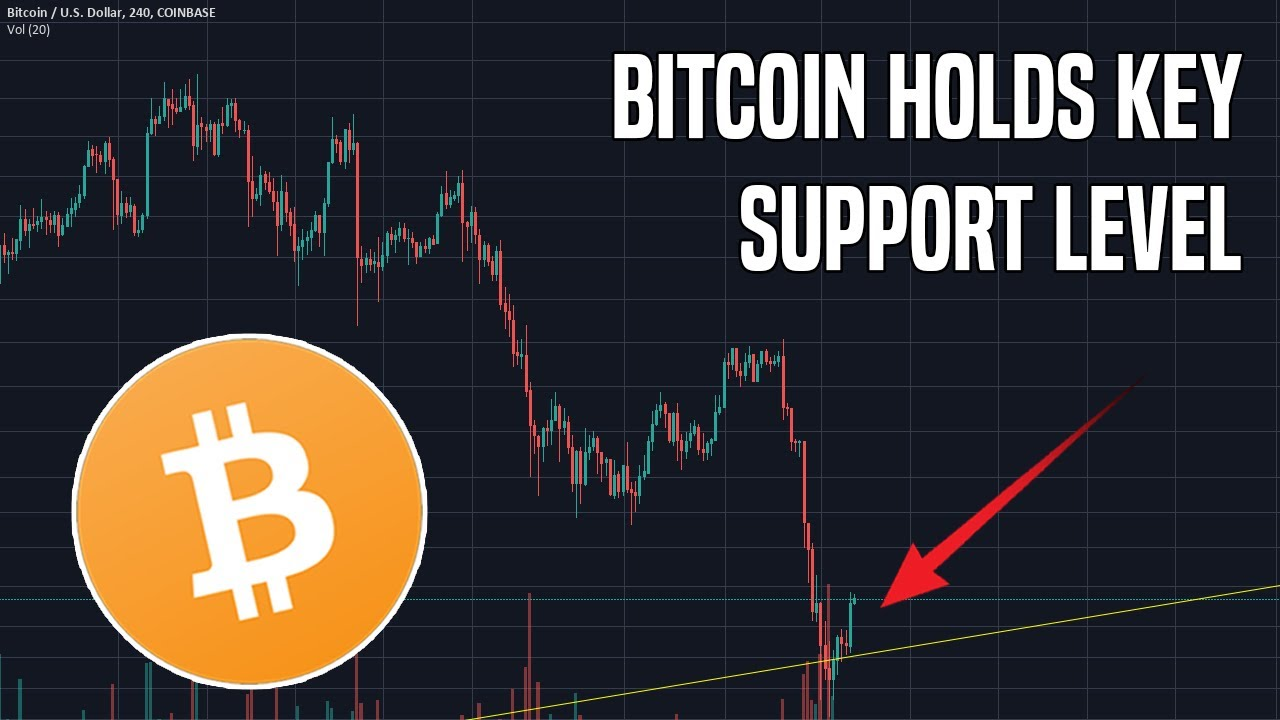 Bitcoin Holds Critical Support And Altcoins Hold Strong ...