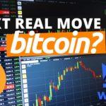 Bitcoin Price Support? WazirX WRX Technical Analysis | BTC Trading