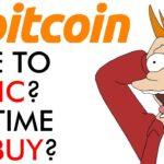Bitcoin - Time to Panic or Time to Buy?