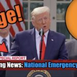 President Trump Just Declared A National Emergency - Everything You MUST KNOW If You Hold Bitcoin