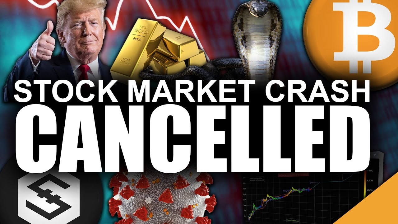 Stock Market CRASH Cancelled (Best Bet for Bitcoin Price)