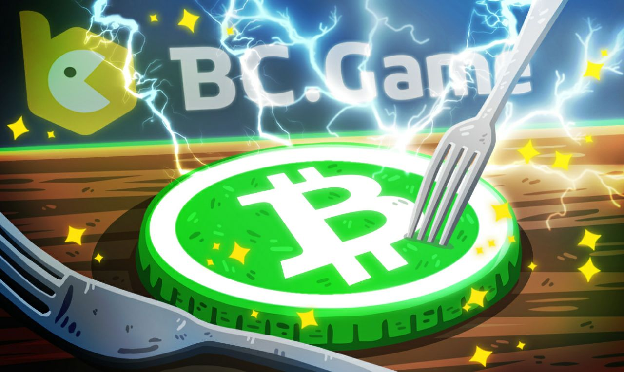 Bitcoin Cash (BCH) Hard Fork: Everything You Need to Know