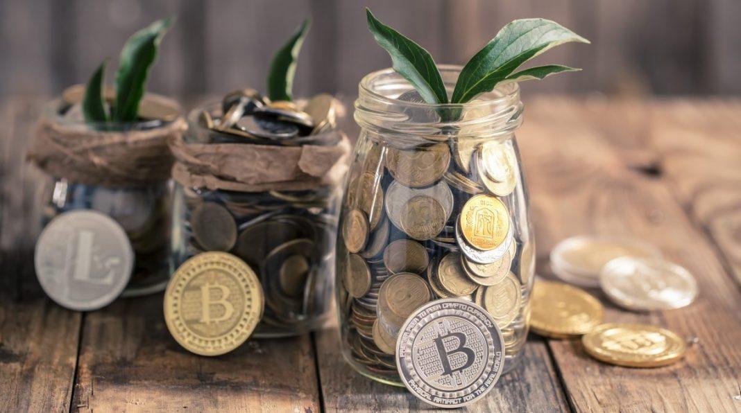 How To Become A Crypto Investor By Dividing Your Crypto Portfolio Sparingly